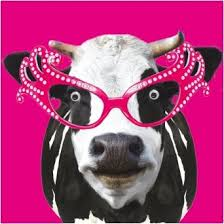 Cow Birthday Card Googly Eyed Cow Birthday Card 2 50 A Great Range Of Googly