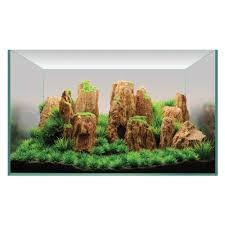 Aquascaping Rocks Hugo Kamishi Aquascaping Decor Display Kit 2 For Aquariums