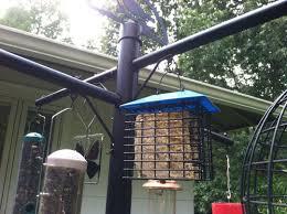 wondrous best bird feeder pole 37 best pole mounted bird feeder