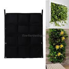 indoor vertical garden plants 12 best garden design ideas