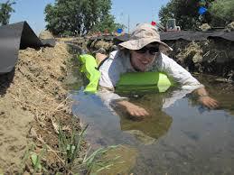 native plant restoration aquatic plants and restoration emily peffer zefferman