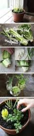how to make an indoor window sill herb garden window sill food