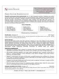 resume examples for project managers project manager resume sample doc project manager resume sample project manager cv template 2 free templates in pdf