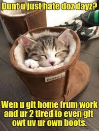 Puss In Boots Meme - pin by peter small on puss in boots pinterest more softies sexy