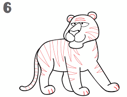 how to draw a tiger by