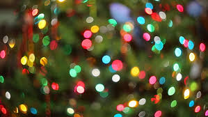 christmas pine tree defocused colorful garland lights are