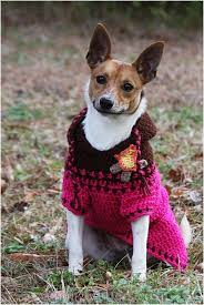 top 10 cute diy dog sweaters with free crochet patterns top