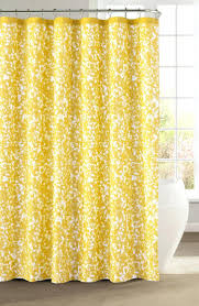Pier One Paisley Curtains by Shower Curtains Pier One Shower Curtain Design Pier One Shower