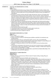 professional nursing resume exles professional resume sles velvet sle no experience