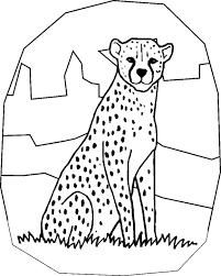 cheetah coloring pages free coloring pages cheetah print