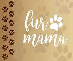 fur mama viny decal iron on decal dog heart paw print paw print