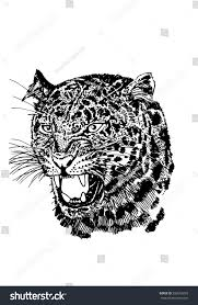vector portrait graphical leopard angry leopard stock vector
