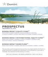 ttees meaning domini social investment trust
