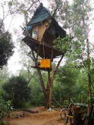 Cool Bird House Plans by Simple Design Engrossing Sphere Origin Production House Mumbai