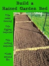 raised garden beds for sale build raised beds from cedar fencing preparednessmama