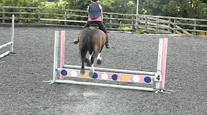 60 cm 60cm showjumping training finals 3rd place youtube