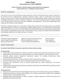 sample resume in usa download business analyst resume samples
