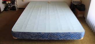 Bed Bug Pictures Of Mattresses How To Get Rid Of Bed Bugs Using Less Pesticide Invisiverse
