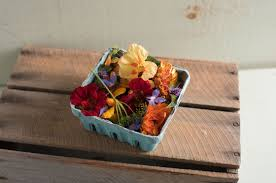 organic edible flowers organic edible flower collection seeds johnny s selected seeds