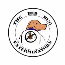 Bed Bug Exterminator Detroit Blog U2014 The Bed Bug Exterminators