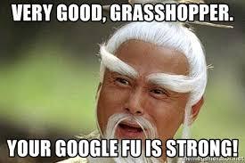 Google Meme Generator - very good grasshopper your google fu is strong kungfu master