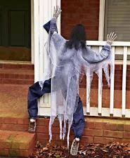 Halloween Outdoor Decorations Australia by Scary Halloween Decorations Ebay