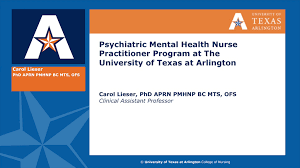 psychiatric mental health nurse practitioner msn u2014 college of
