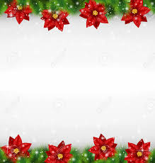 poinsettia stock photos royalty free poinsettia images and pictures
