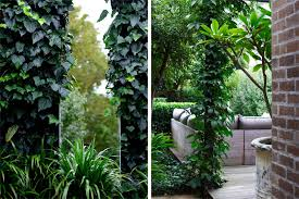 Wall Gardens Sydney by Kensington Landscape Design By Secret Gardens Sydney Landscape