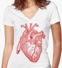 Human Anatomy T Shirts Anatomy Heart T Shirts Redbubble