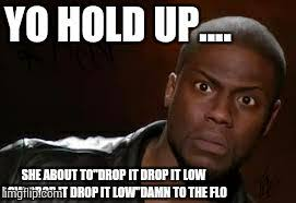 Drop It Meme - kevin hart the hell meme imgflip