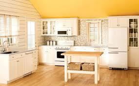 Retro Kitchen Decorating Ideas by 100 Old Kitchen Ideas Kitchen Remodeling Kitchen Ideas