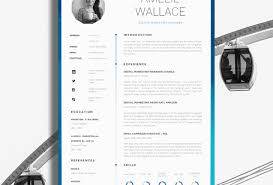 glamorous professional resume writing service cost tags
