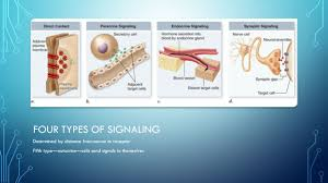 unit five chapter 9 cell communication chapter ppt download