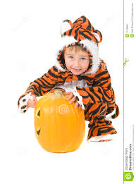 tiger toddler halloween costume toddler in tiger costume over pumpkin royalty free stock image