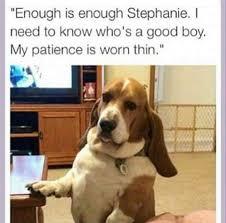 Tired Dog Meme - tired dog meme by marctx8 memedroid