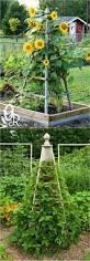 21 easy diy trellis vertical garden structures page 3 of 3 21 easy diy trellis vertical garden structures page 3 of 3