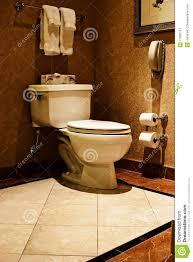 luxury toilet royalty free stock photography image 11090747