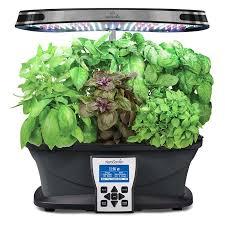 international basil seed kit 6 7 pod for indoor basil gardens