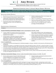 Sample Resume Portfolio by Professional Manager Resume Portfolio Manager Resume