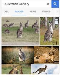Growing Up Italian Australian Memes - 25 best memes about australian australian memes