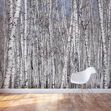 28 birch wall mural wall mural birch forest in summer peel birch wall mural white birch trees wall mural