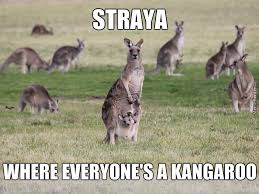 Straya Memes - straya mate by mr potato304 meme center