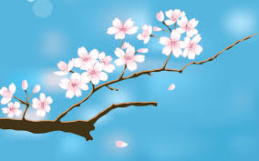 hd images of flowers spring desktop backgrounds u2013 wallpapercraft