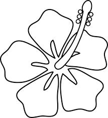 coloring pictures of hibiscus flowers hibiscus clipart coloring 3607669