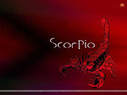 scorpio scorpio scorpio zodiac and astrology scorpio