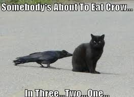 Crow Meme - eating crow meme google search scrats and little beasties