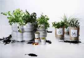 100 indoor garden kit simple indoor herb garden kit walmart