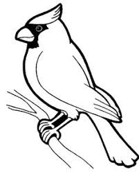 pheasant coloring pages bird coloring pages coloringpages1001