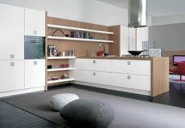Kitchen Cabinet Chicago Interior Modern Minimalist Kitchen Cabinet Chicago Countery With